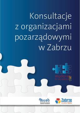 Konsultacje z organizacjami pozarządowymi w Zabrzu